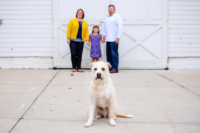 beccihethcoatphotography-family photographer-wheaton-23